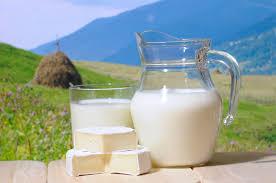 Количество калорий и протеина в литре молока