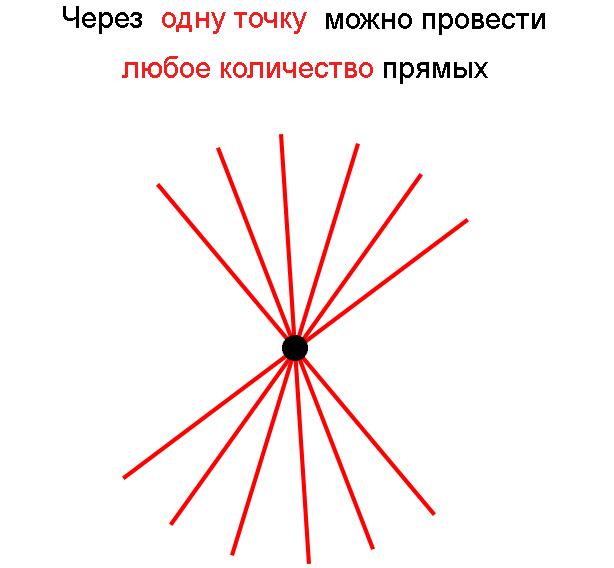 Сколько прямых можно провести через одну точку