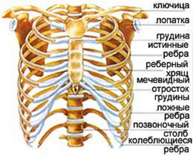 Прыщи на груди - основные причины