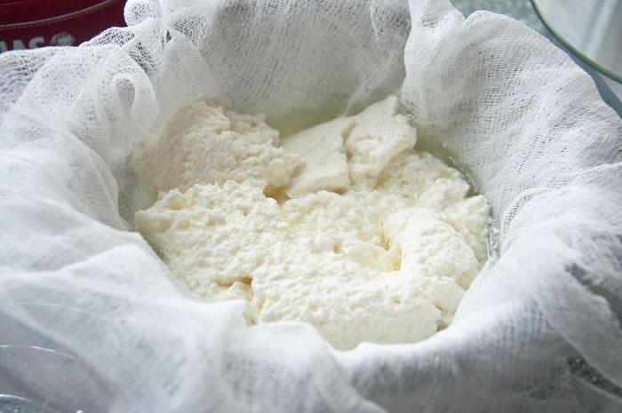 Сколько творога получается из 1 литра молока